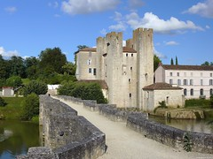 Moulin des tours - Barbaste (France)