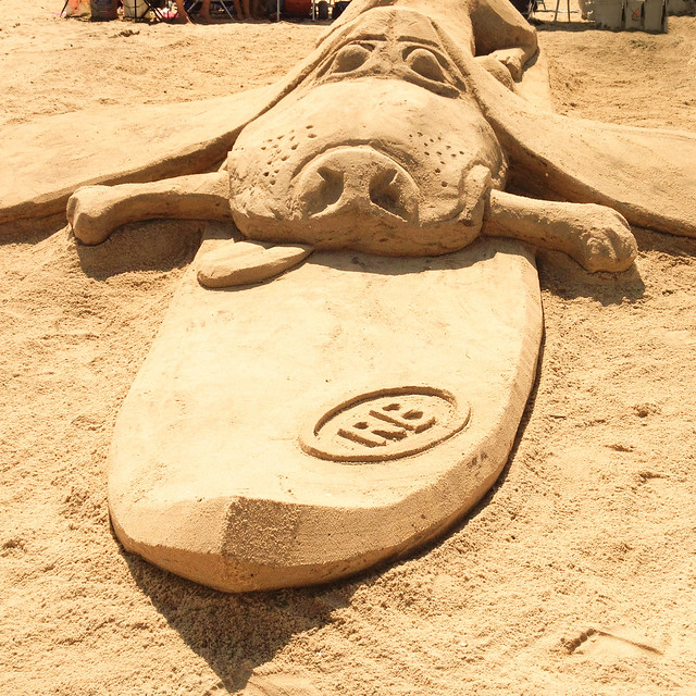 Rehoboth Beach Dog Friendly B Amp