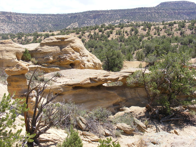New Mexico Natural Arch NM-329