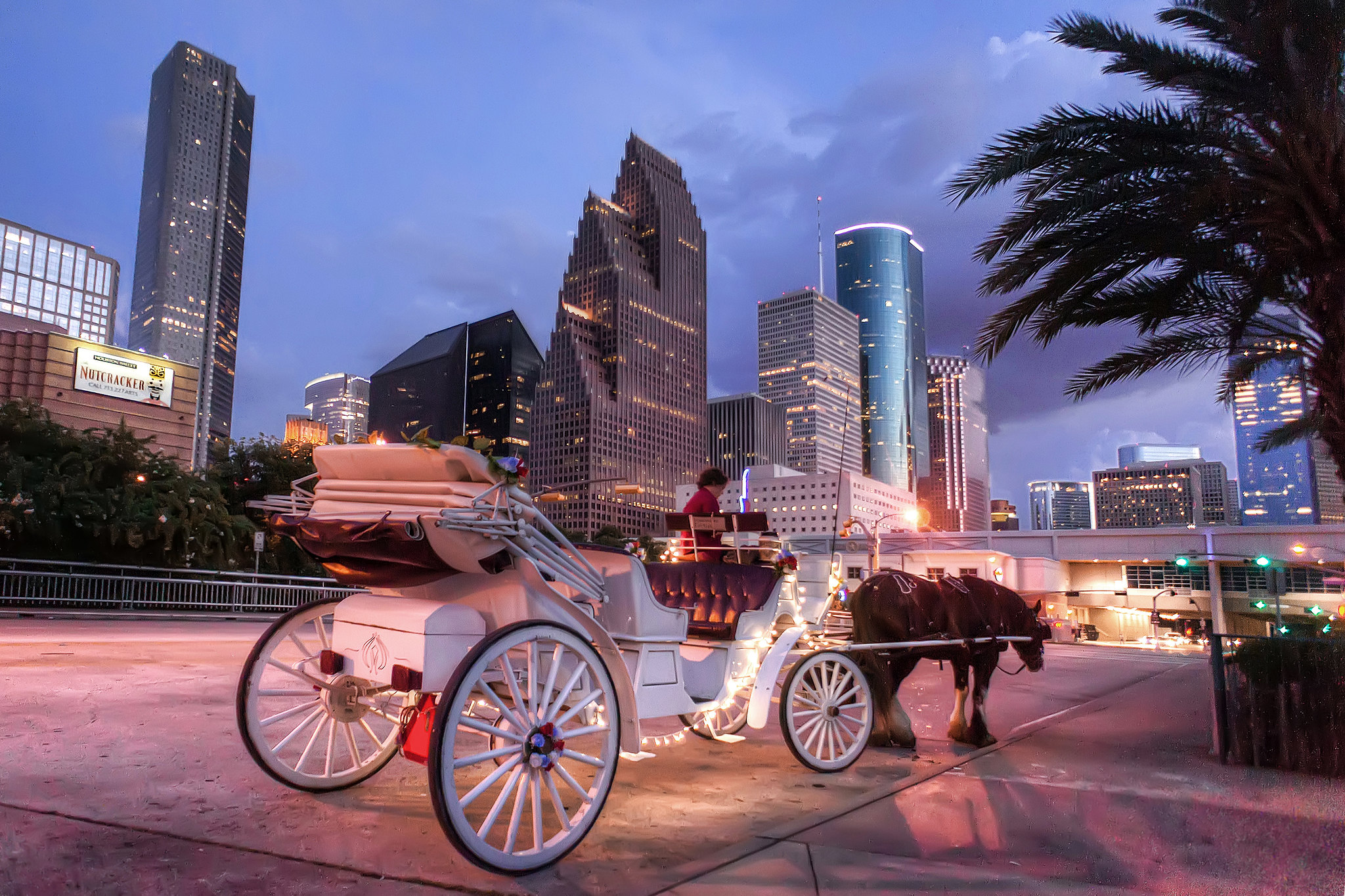 Horse drawn carriage at the downtown aquarium in houston for Places for photo shoots