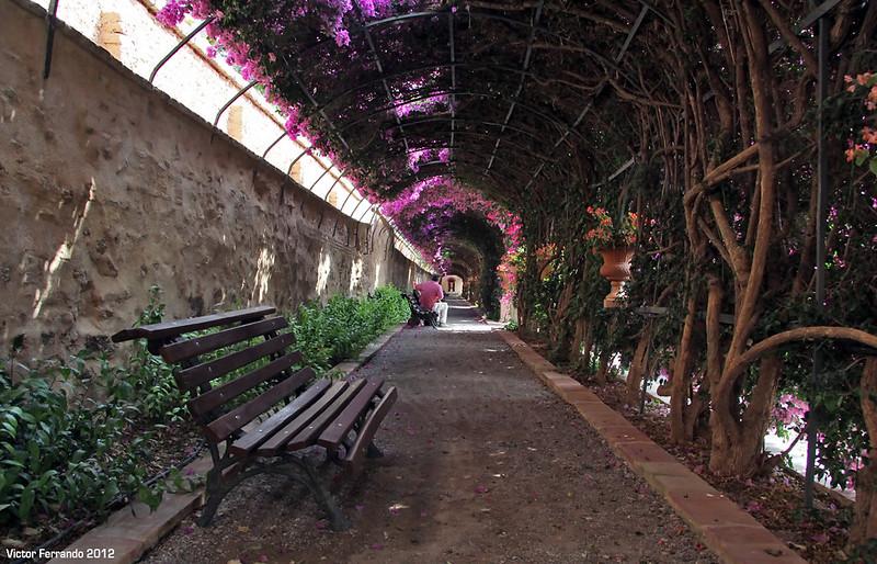 Jardines de monforte una joya escondida en valencia for Jardines de monforte