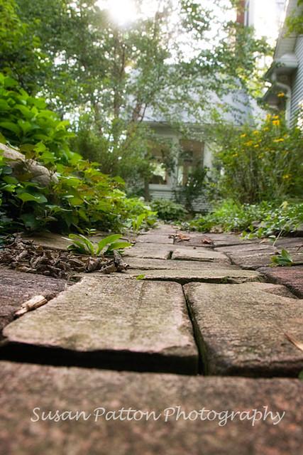 wSecret_garden