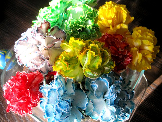 Color changing flowers skullflake studios for Color changing roses