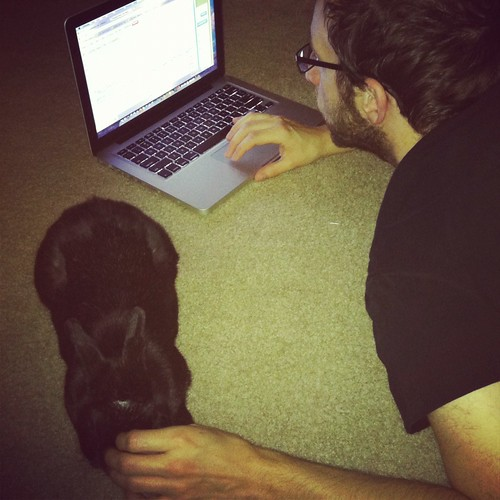 working & bun