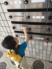 郵便受けで遊ぶとらちゃん (2012/7/2)
