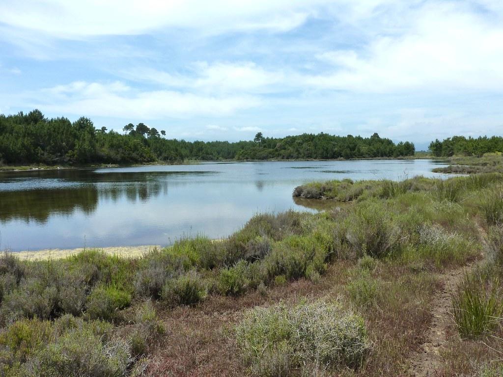 grand étang datant site