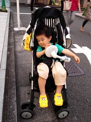 夕方 代官山 散歩 とらちゃん (2012/7/25)
