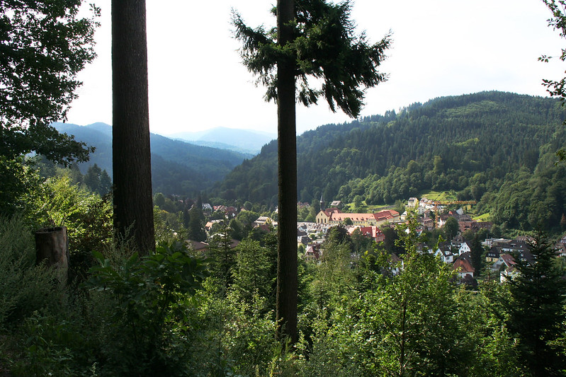 View from Gigi's balcony over the Black Forest in Germany