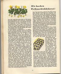 König Bilderrezepte No3: Wir backen Weihnachtsbäckerei (I)