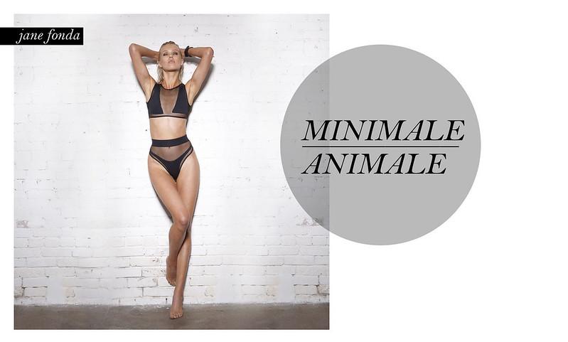 minimale animale 1