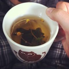 cup, tea, da hong pao, drink,