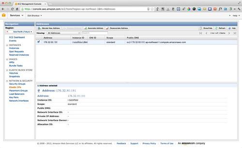 IP アドレスと Instance の紐付け完了