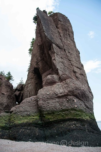 Hopewell Rocks-7