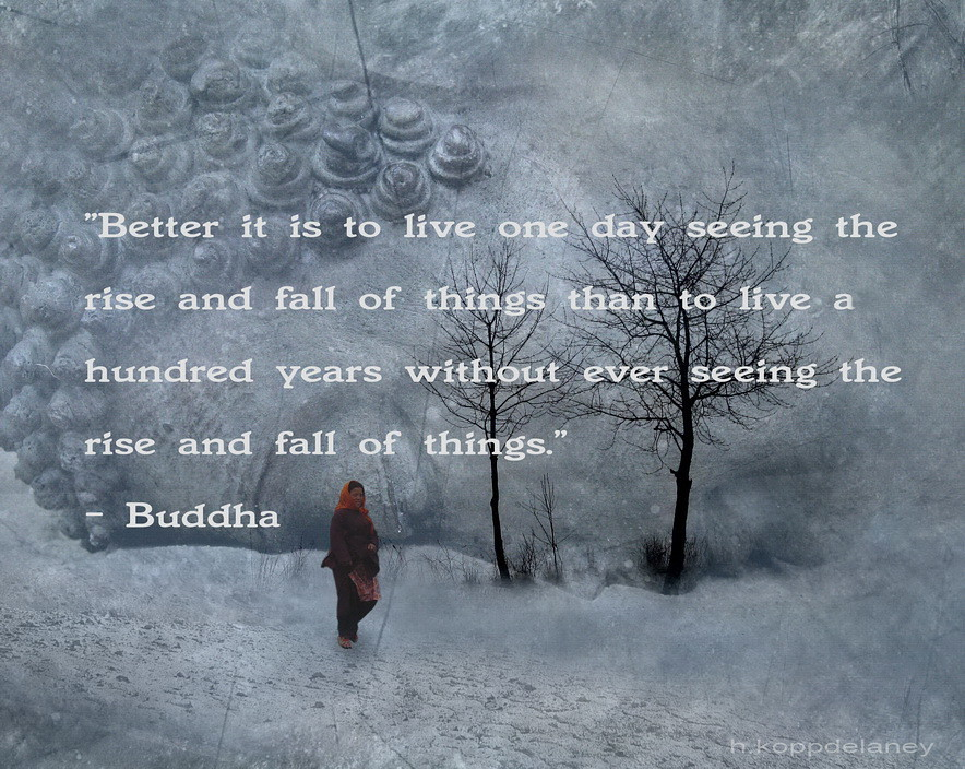Buddha Quote 3 A Photo On Flickriver
