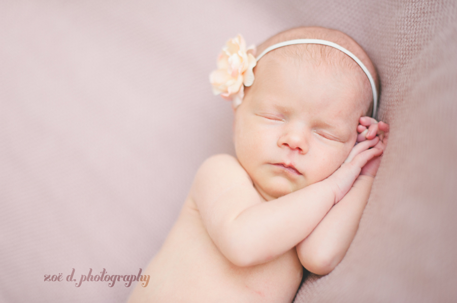 dallas newborn photographer photos of baby on pink backdrop