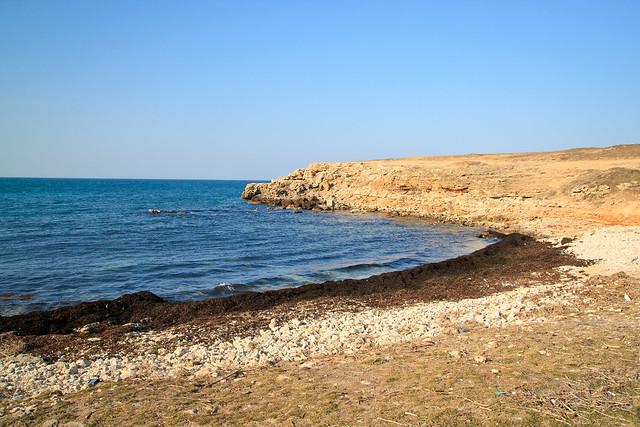 Crimean shore