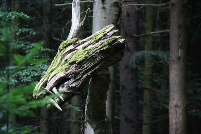 Dragon in Freiburg's Black Forest