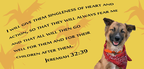 Steadfast Dog Bible Quote