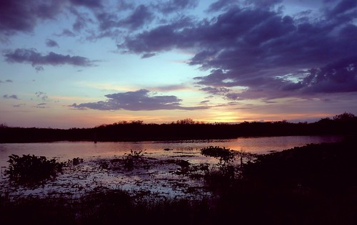 sunset color nature beauty unitedstates natural florida wildlife dramatic national everglades drama cloudscape floridaeverglades refuge southflorida palmbeachcounty loxahatchee naturesfinest boyntonbeachflorida supershot quartasunsetgroup dmslair thesunshinegroup sunrays5 quartasunset130
