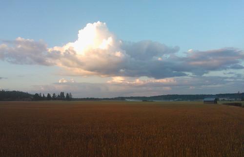 cloud mist field finland evening country pilvi maaseutu pelto