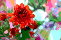 Fabric & Flowers