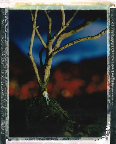 dreaming tree (v2) by Parahanga