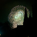 4thJuly_Boston-7