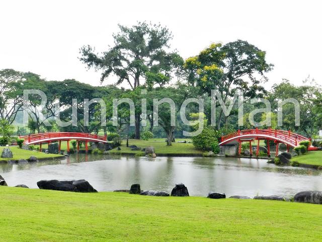 Chinese Garden & Japanese Garden 09