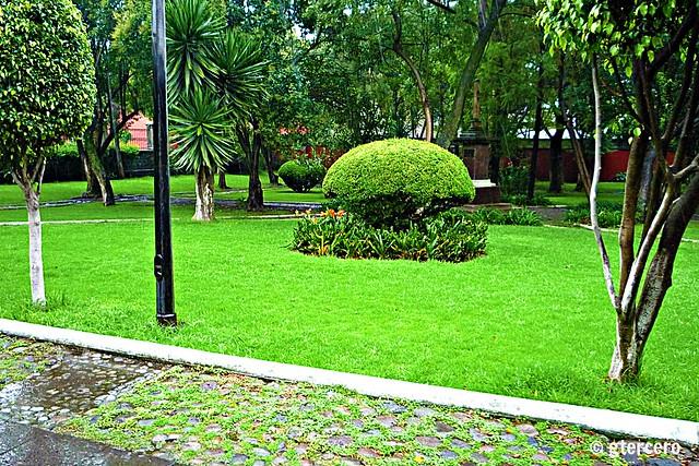 Jardines de la parroquia de santo domingo de guzm n for Jardines pequenos mexicanos