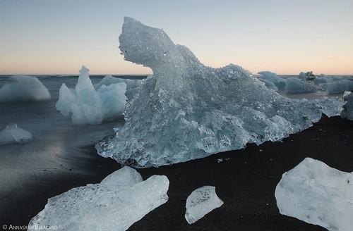 blue sunset black ice beach blacksand iceland sand glacier jökulsarlon glacierice iceblocks