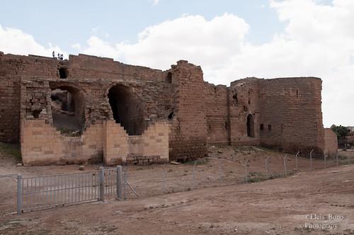 Castillo fatimí en Harran