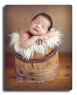 ny newborn photographer