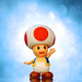 toad image, photo or clip art