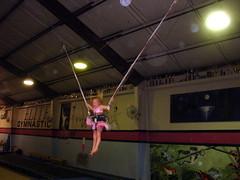 sports(0.0), performing arts(0.0), gymnastics(0.0), trampolining(1.0),