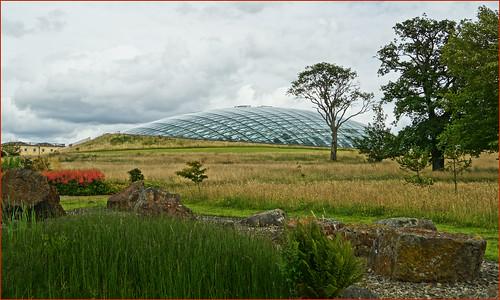 plants wales landscape meditteranean botanicgardenofwales thegreatgreenhouse