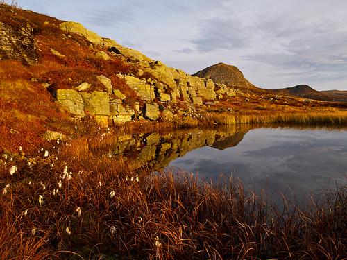 autumn mountain norway norge herfst noorwegen valdresflya klaracolor