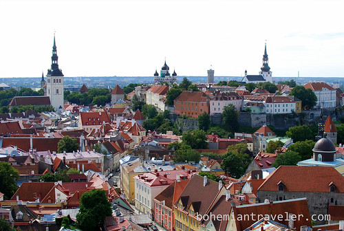 view from St Olaf tower Tallinn