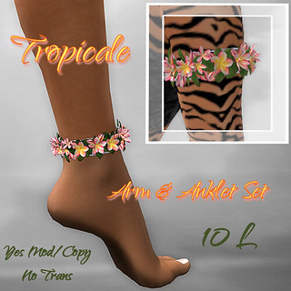 Tropicale Arm & Leg Bands Three ~OF~ PIC