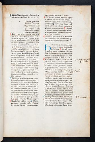 Manuscript initial in Gentilis Fulginas: Consilium contra pestilentiam