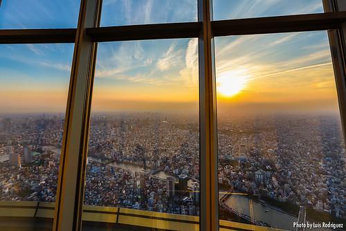 Tembo Galleria (Tokyo Skytree)-25