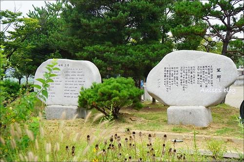 韓國DMZ_004