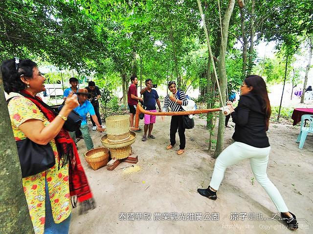 泰國華欣 農業觀光推廣公園 20