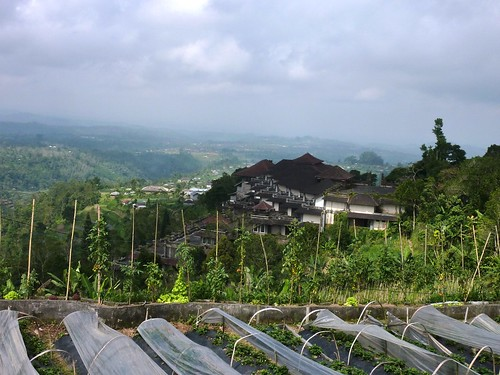 Bali-Route Jatiluwih-Bedugul-Munduk (5)