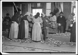 Small boy on the floor is Johnnie Schraker, 8 years old, earns 45 cents a day, been at it for 3 years. Note how they stand on the rough sharp shells, February 1911