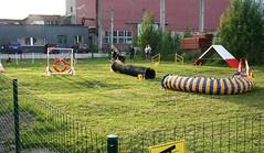 Koeruse treeningplats