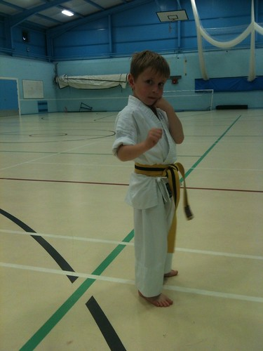 Yellow belt senior Predlet 2.0