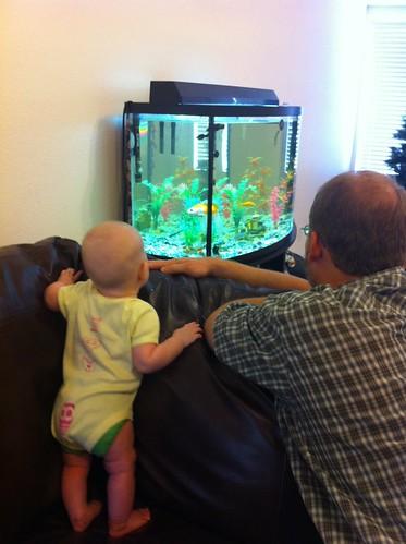 Ooo, fish!