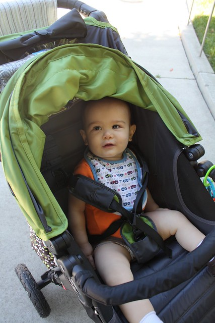 In the stroller, being happy