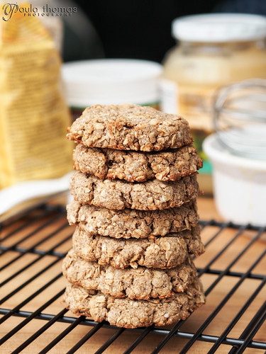 Gluten Free Sugar Free Oatmeal Cookies