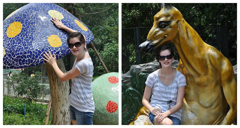 Zoo Collage 6